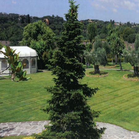 Domus Borghese Parco